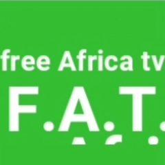 free-africa-tv.com